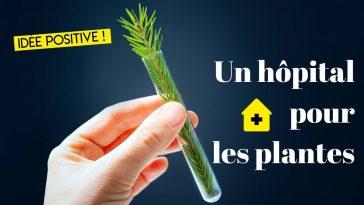 hopital pour les plantes